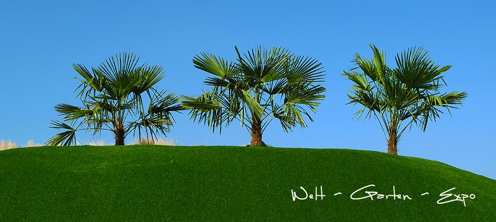 7 Floriade 2012